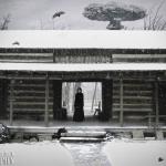 6-52-theme-paradise-paradise lost-alli woods frederick photography