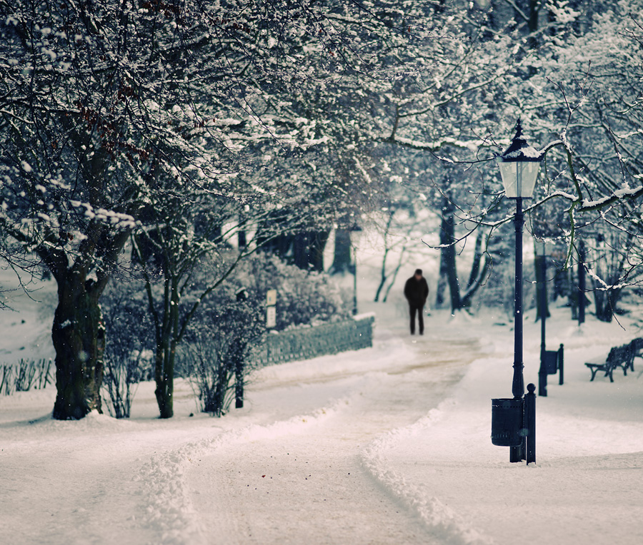 """man walking in the snow"", ""man walking in the park"", snow, park, photograph"