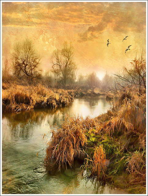 nature, swamp, march, watercolor, photograph, treatment