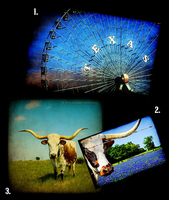 """""""collage of photos of texas from etsy sellers"""""""