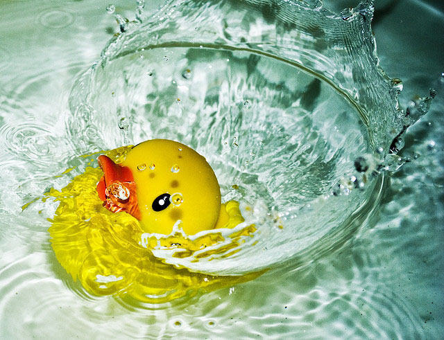 """photo of rubber duck splashing in water"""