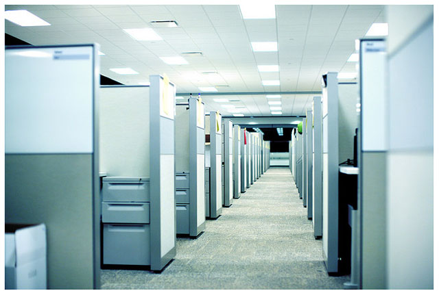 """blue toned photo of office cubicles"""