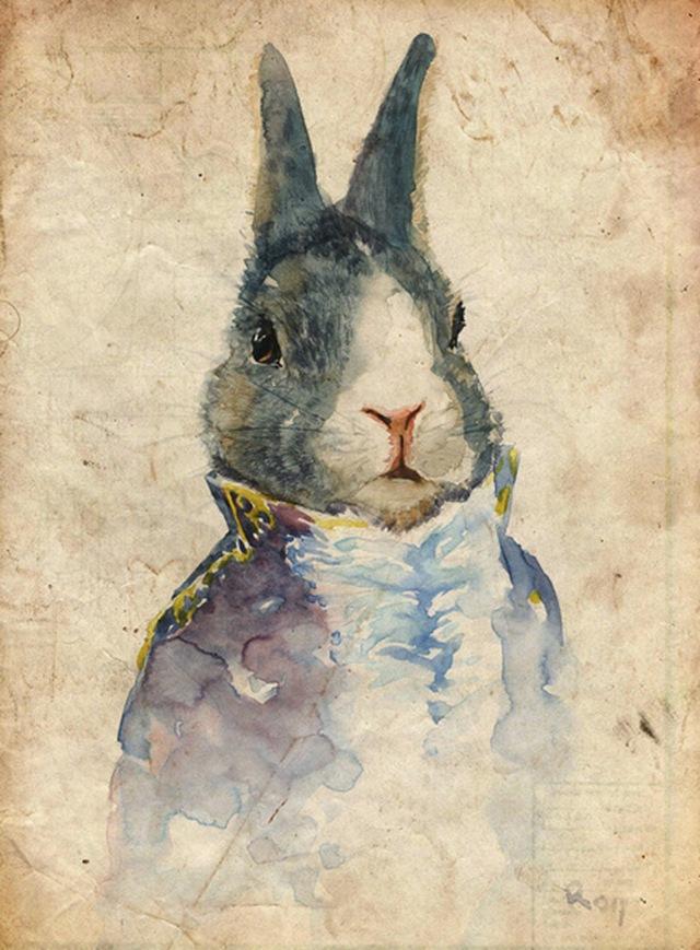 rabbit duke