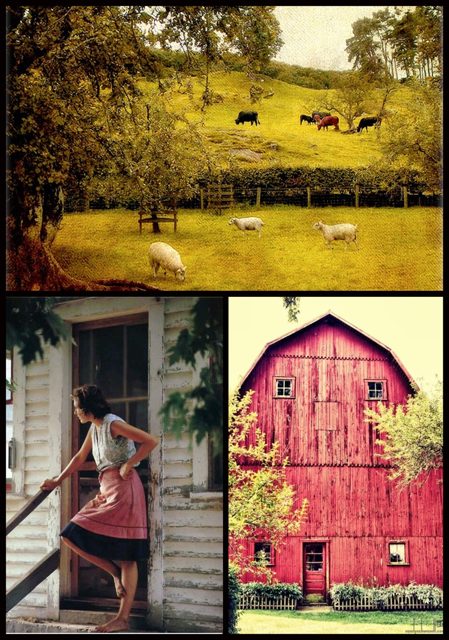 Dream a little dream farm living kisses chaos for Ranch and rural living