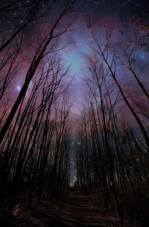 winter-night-sky